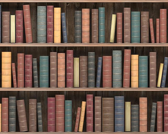 imageTop-Mobile-books